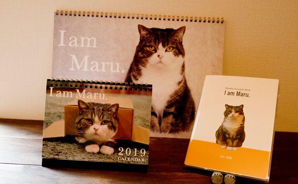 カレンダー&ダイアリー2019です。Maru's calendar and diary of 2019.